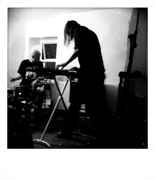 Corsano Flower Photo