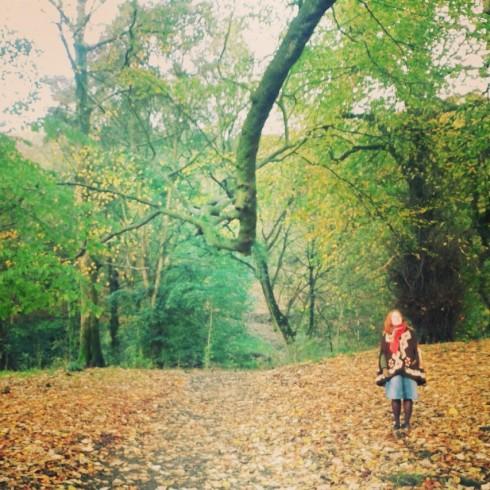 sof woods